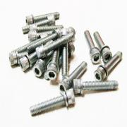 Primary Screw Bolts (each), 4813A, fits a Harley Davidson Big Twin